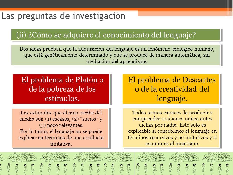 Las preguntas de investigación (ii) ¿Cómo se adquiere el conocimiento del lenguaje? El problema de Platón o de la pobreza de los estímulos. El problem