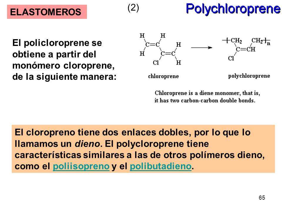 65 ELASTOMEROS El cloropreno tiene dos enlaces dobles, por lo que lo llamamos un dieno. El polycloroprene tiene características similares a las de otr