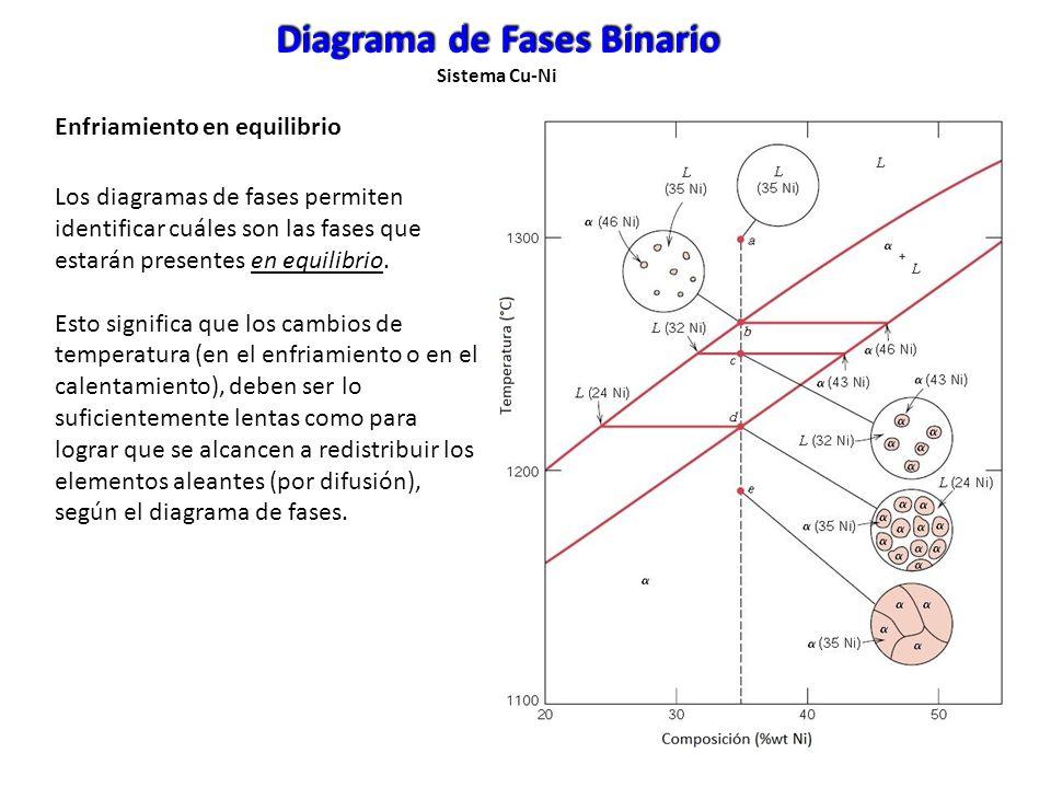 Los diagramas de fases permiten identificar cuáles son las fases que estarán presentes en equilibrio. Esto significa que los cambios de temperatura (e