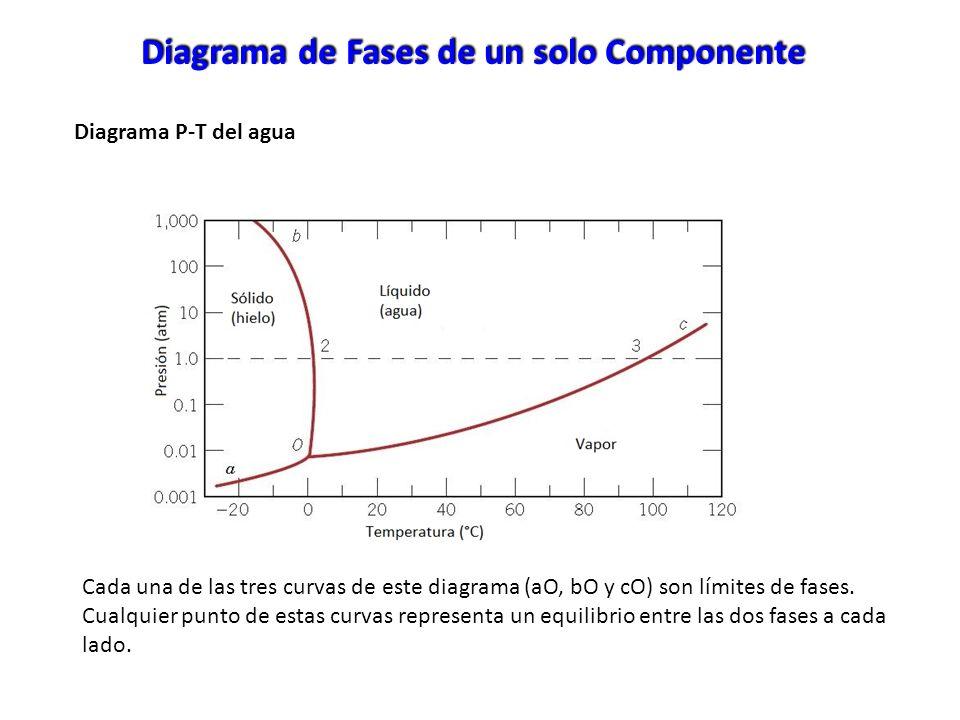 Diagrama P-T del agua Diagrama de Fases de un solo Componente Cada una de las tres curvas de este diagrama (aO, bO y cO) son límites de fases. Cualqui
