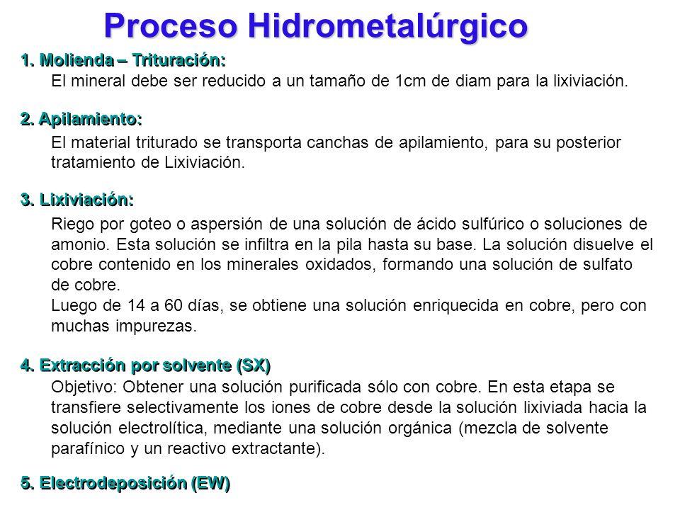 Proceso Hidrometalúrgico El mineral debe ser reducido a un tamaño de 1cm de diam para la lixiviación. El material triturado se transporta canchas de a