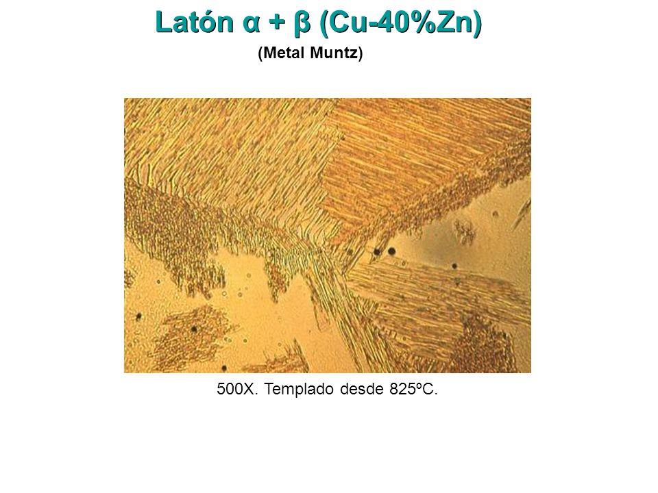 500X. Templado desde 825ºC. Latón α + β (Cu-40%Zn) (Metal Muntz)