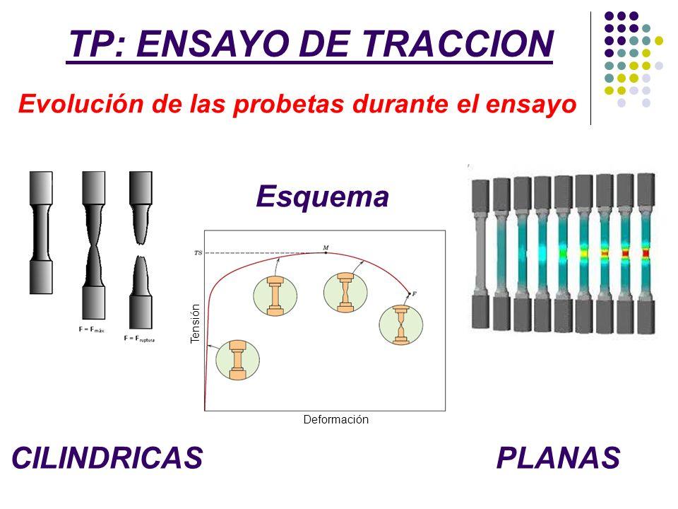 TP: ENSAYO DE TRACCION Evolución de las probetas durante el ensayo CILINDRICASPLANAS Tensión Deformación Esquema