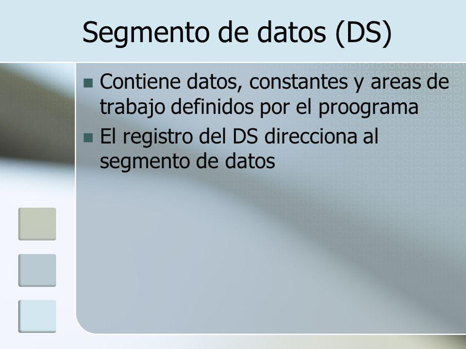 Segmento de datos (DS) Contiene datos, constantes y areas de trabajo definidos por el proograma El registro del DS direcciona al segmento de datos