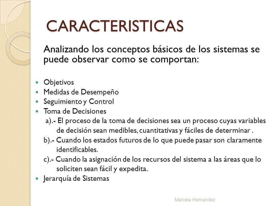 CARACTERISTICAS Analizando los conceptos básicos de los sistemas se puede observar como se comportan: Objetivos Medidas de Desempeño Seguimiento y Con