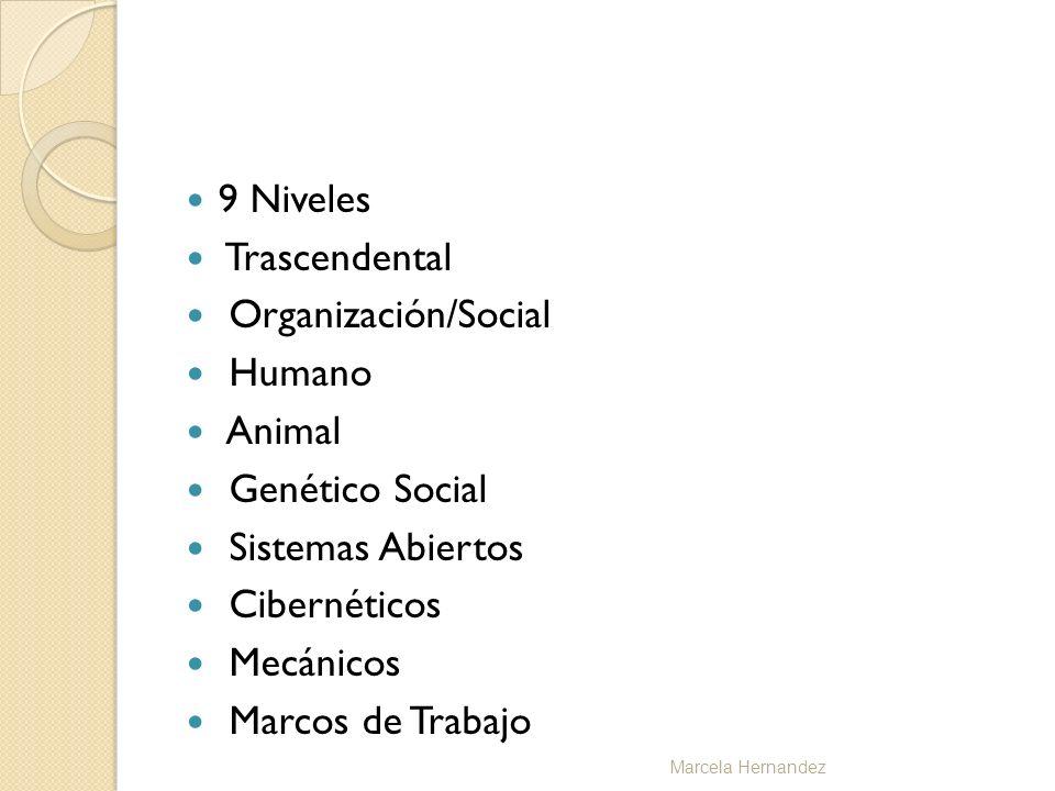 9 Niveles Trascendental Organización/Social Humano Animal Genético Social Sistemas Abiertos Cibernéticos Mecánicos Marcos de Trabajo Marcela Hernandez
