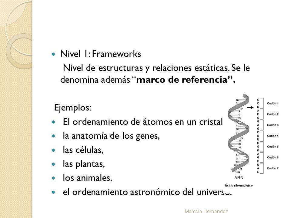 Nivel 1: Frameworks Nivel de estructuras y relaciones estáticas. Se le denomina además marco de referencia. Ejemplos: El ordenamiento de átomos en un