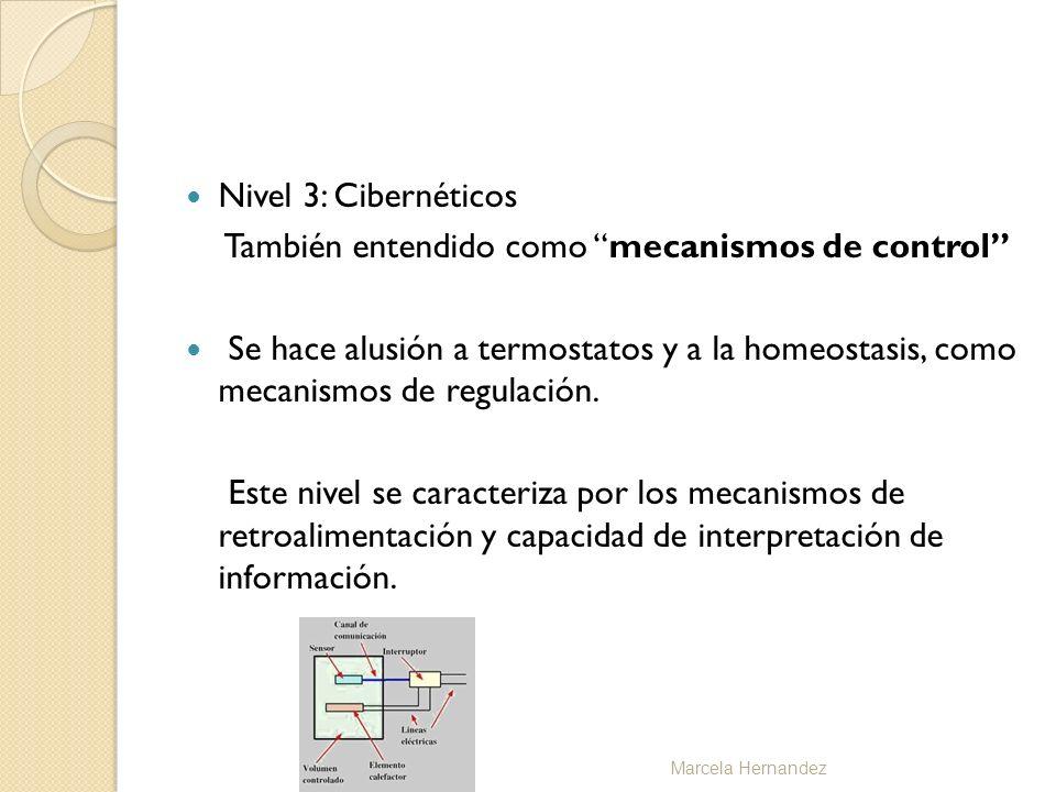 Nivel 3: Cibernéticos También entendido como mecanismos de control Se hace alusión a termostatos y a la homeostasis, como mecanismos de regulación. Es