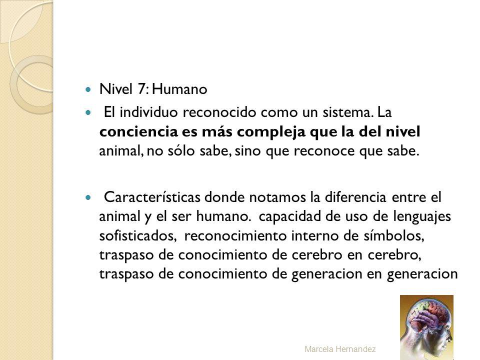 Nivel 7: Humano El individuo reconocido como un sistema. La conciencia es más compleja que la del nivel animal, no sólo sabe, sino que reconoce que sa