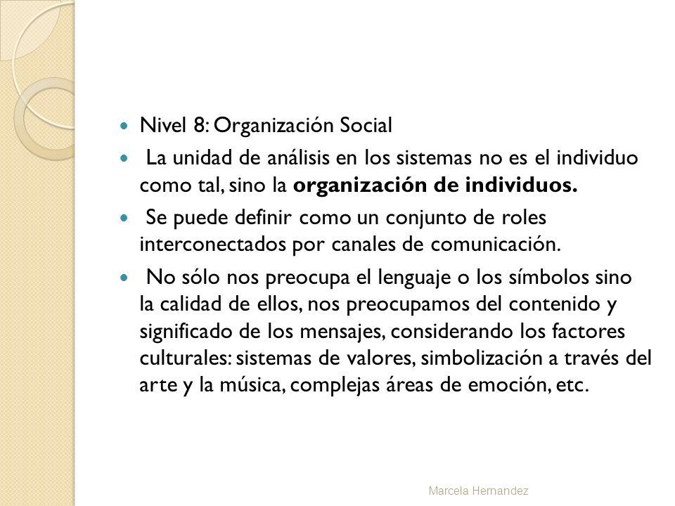 Nivel 8: Organización Social La unidad de análisis en los sistemas no es el individuo como tal, sino la organización de individuos. Se puede definir c