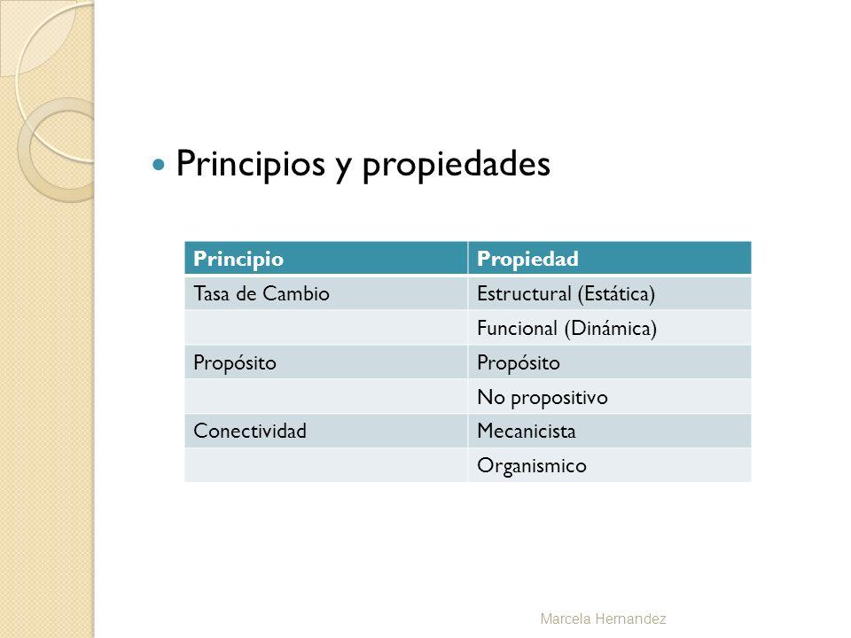 Principios y propiedades PrincipioPropiedad Tasa de CambioEstructural (Estática) Funcional (Dinámica) Propósito No propositivo ConectividadMecanicista