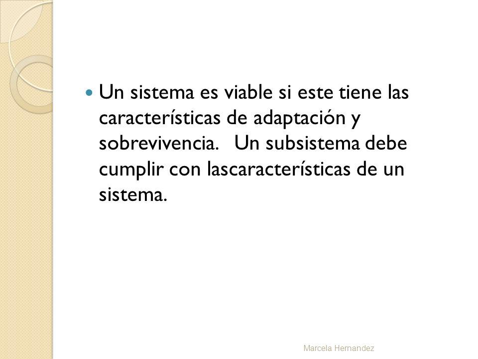 Un sistema es viable si este tiene las características de adaptación y sobrevivencia. Un subsistema debe cumplir con lascaracterísticas de un sistema.