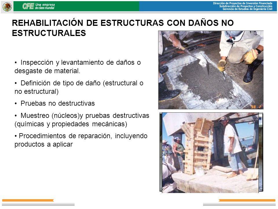Inspección y levantamiento de daños o desgaste de material. Definición de tipo de daño (estructural o no estructural) Pruebas no destructivas Muestreo