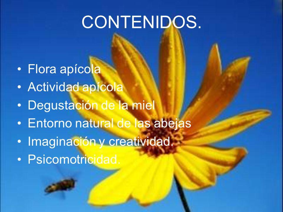 CONTENIDOS. Flora apícola Actividad apícola Degustación de la miel Entorno natural de las abejas Imaginación y creatividad. Psicomotricidad.