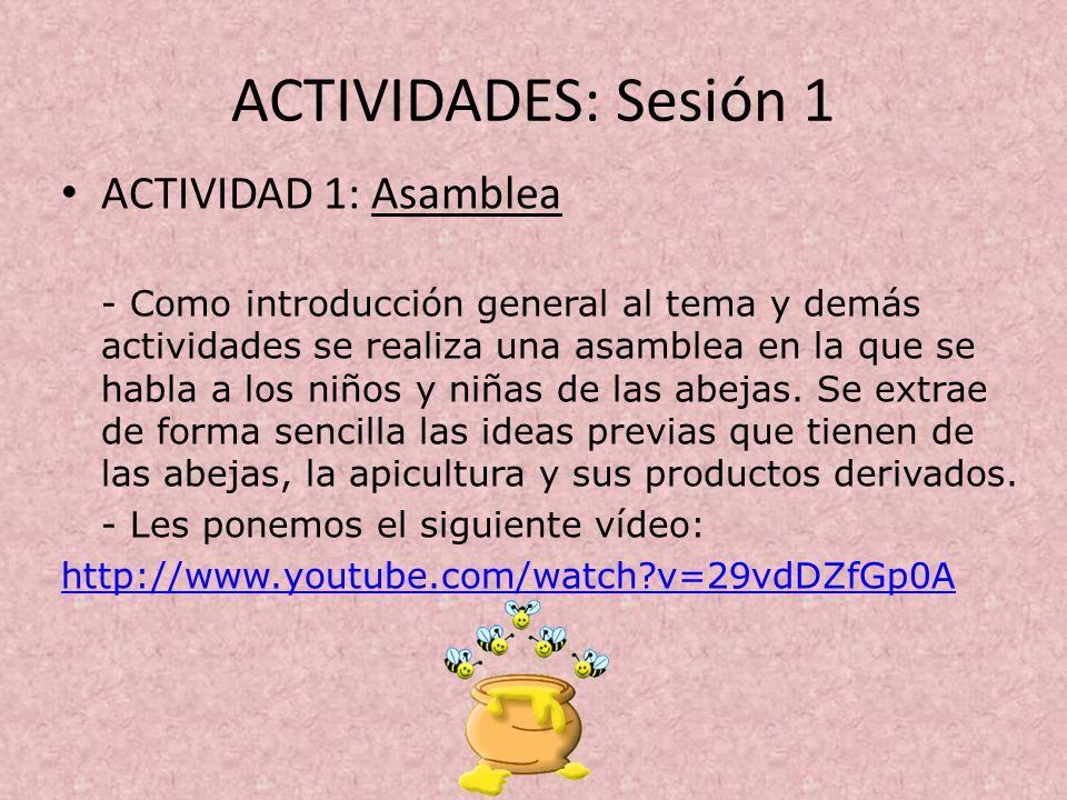 ACTIVIDADES: Sesión 1 ACTIVIDAD 1: Asamblea - Como introducción general al tema y demás actividades se realiza una asamblea en la que se habla a los n