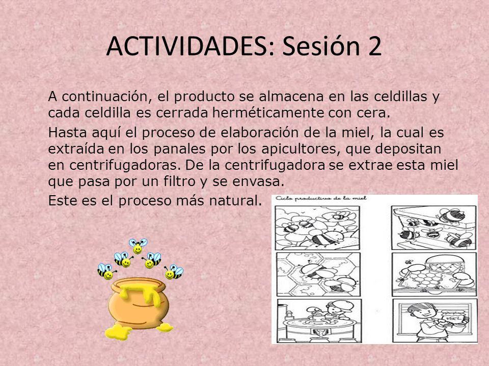 ACTIVIDADES: Sesión 2 A continuación, el producto se almacena en las celdillas y cada celdilla es cerrada herméticamente con cera. Hasta aquí el proce