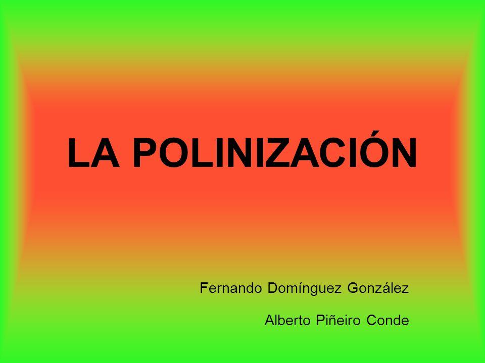 LA POLINIZACIÓN Fernando Domínguez González Alberto Piñeiro Conde