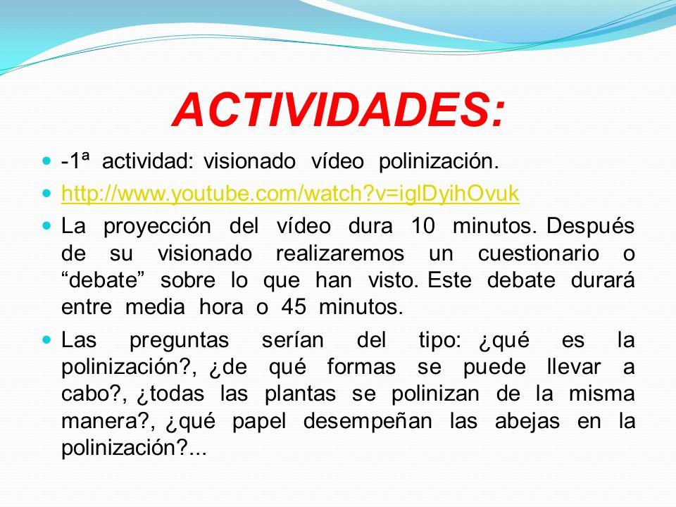 ACTIVIDADES: -1ª actividad: visionado vídeo polinización. http://www.youtube.com/watch?v=iglDyihOvuk La proyección del vídeo dura 10 minutos. Después