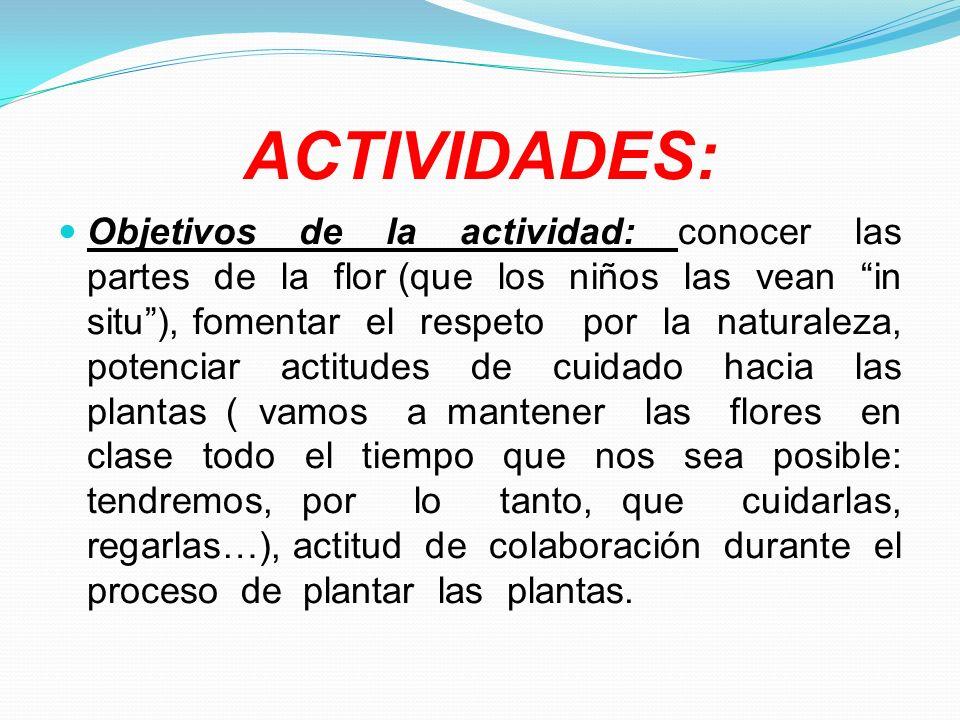 ACTIVIDADES: Objetivos de la actividad: conocer las partes de la flor (que los niños las vean in situ), fomentar el respeto por la naturaleza, potenci