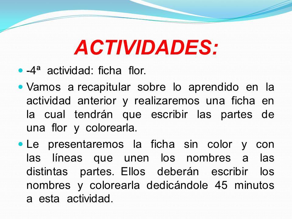 ACTIVIDADES: -4ª actividad: ficha flor. Vamos a recapitular sobre lo aprendido en la actividad anterior y realizaremos una ficha en la cual tendrán qu