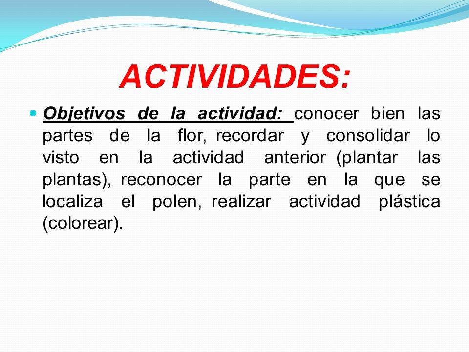 ACTIVIDADES: Objetivos de la actividad: conocer bien las partes de la flor, recordar y consolidar lo visto en la actividad anterior (plantar las plant