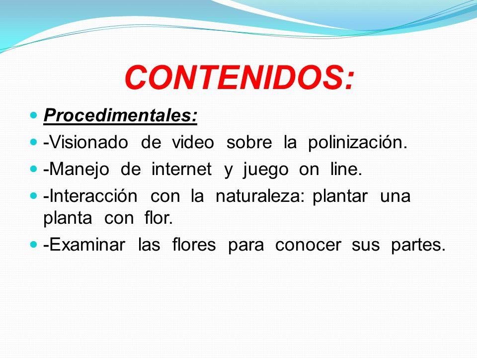 CONTENIDOS: Procedimentales: -Visionado de video sobre la polinización. -Manejo de internet y juego on line. -Interacción con la naturaleza: plantar u
