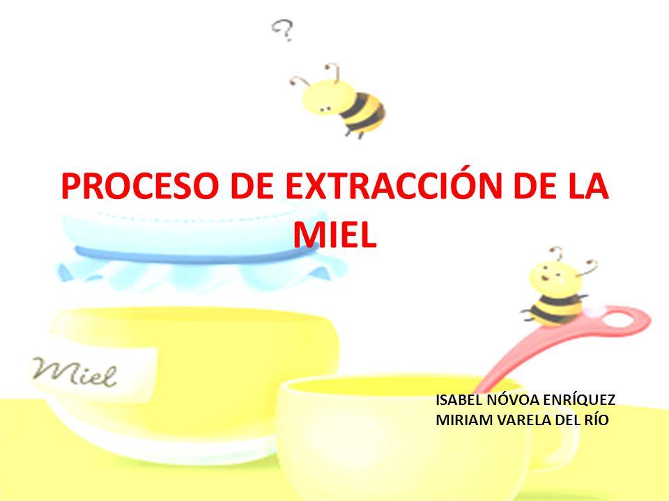 JUSTIFICACIÓN Hemos escogido este tema porque nos parece importante que los niños de Educación Infantil conozcan de donde vienen los alimentos que consumen diariamente, en este caso la miel.