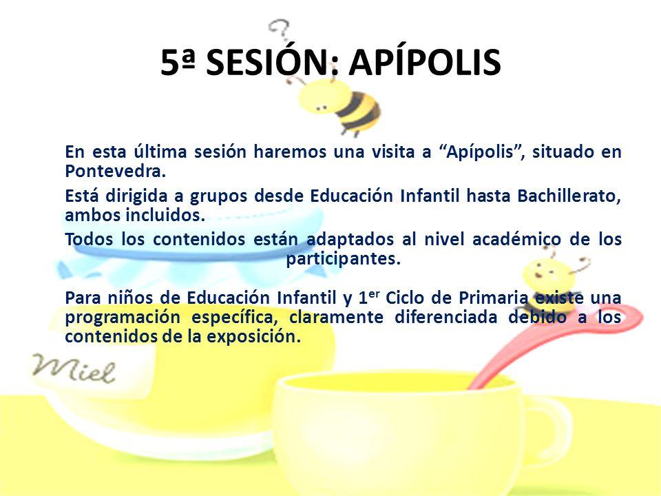 5ª SESIÓN: APÍPOLIS En esta última sesión haremos una visita a Apípolis, situado en Pontevedra. Está dirigida a grupos desde Educación Infantil hasta