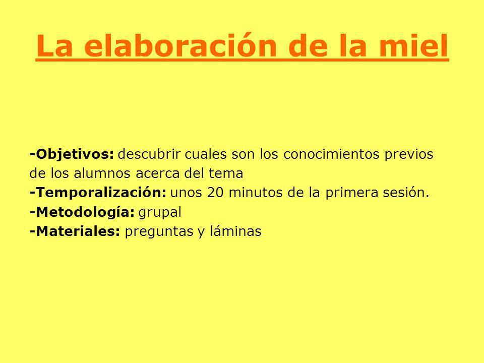 La elaboración de la miel -Objetivos: descubrir cuales son los conocimientos previos de los alumnos acerca del tema -Temporalización: unos 20 minutos