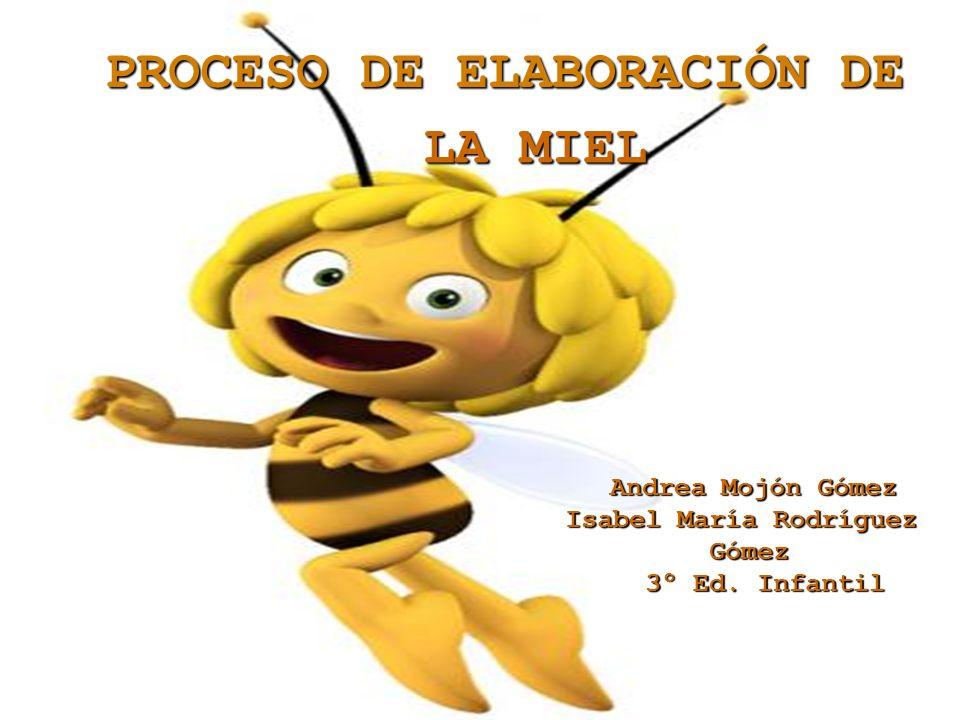 PROCESO DE ELABORACIÓN DE LA MIEL LA MIEL Andrea Mojón Gómez Isabel María Rodríguez Gómez 3º Ed. Infantil 3º Ed. Infantil