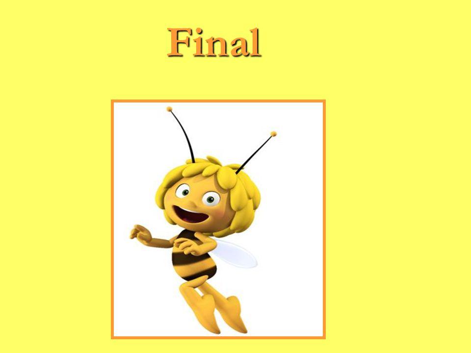 Final Final
