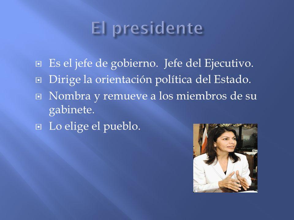 Es el jefe de gobierno. Jefe del Ejecutivo. Dirige la orientación política del Estado. Nombra y remueve a los miembros de su gabinete. Lo elige el pue
