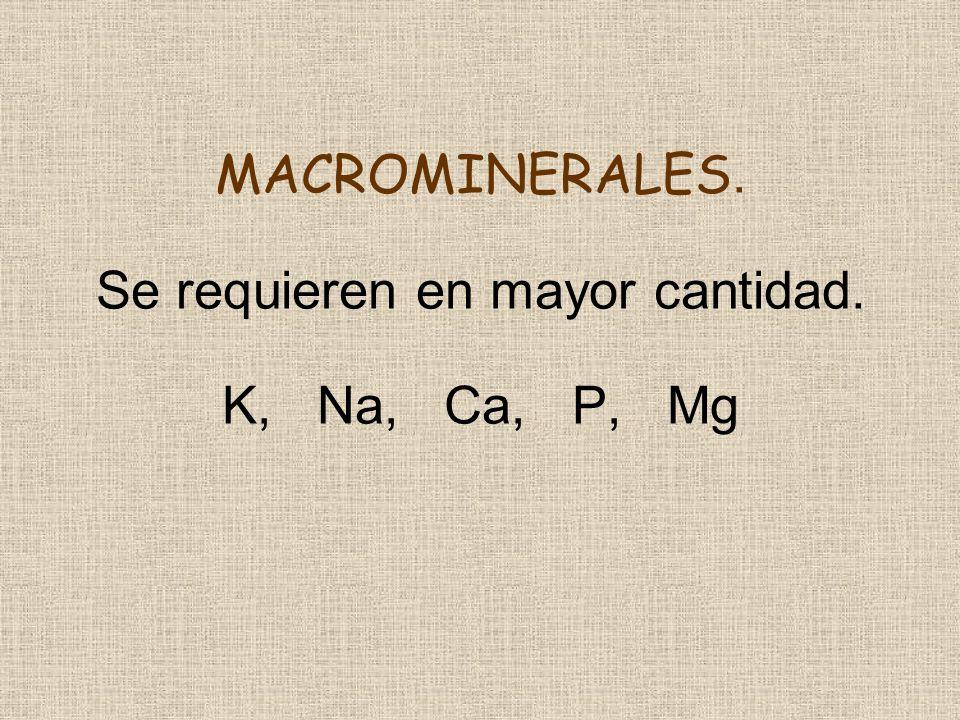 MACROMINERALES. Se requieren en mayor cantidad. K, Na, Ca, P, Mg