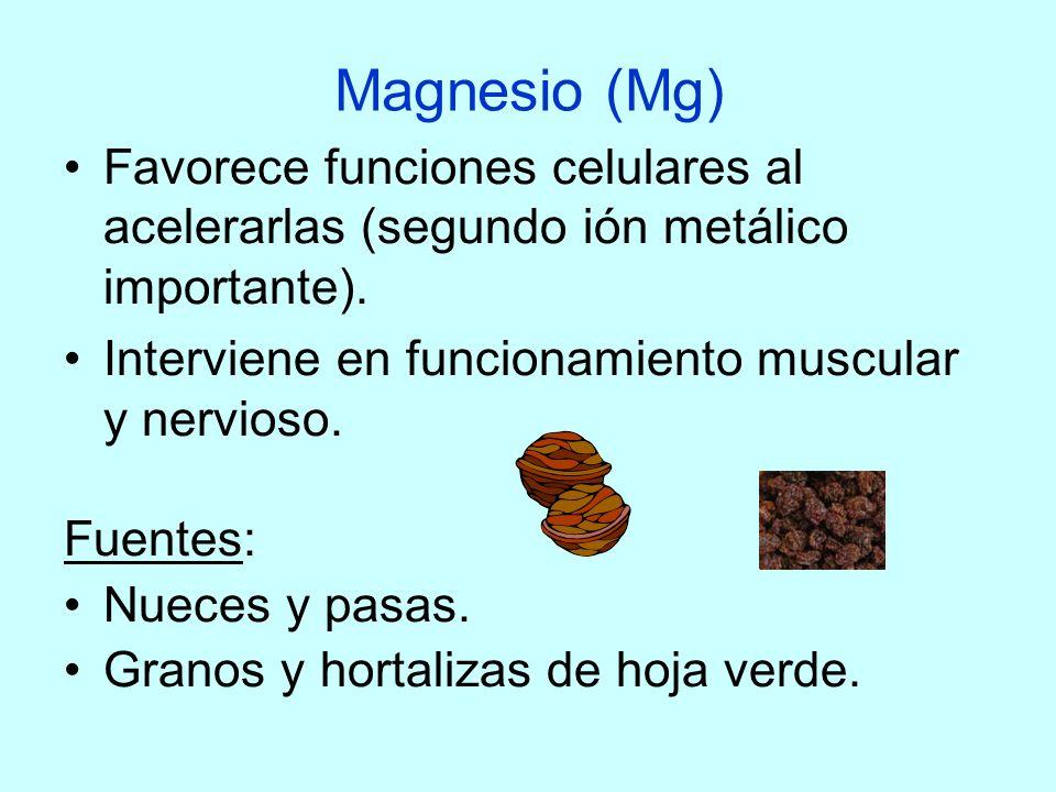 Magnesio (Mg) Favorece funciones celulares al acelerarlas (segundo ión metálico importante). Interviene en funcionamiento muscular y nervioso. Fuentes
