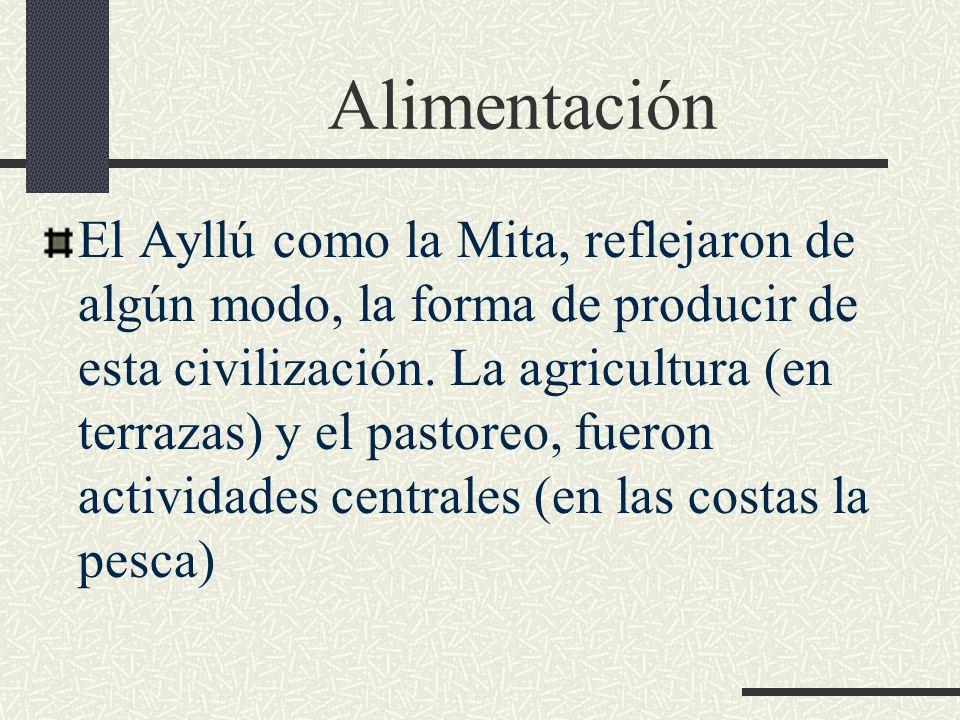 Alimentación El Ayllú como la Mita, reflejaron de algún modo, la forma de producir de esta civilización. La agricultura (en terrazas) y el pastoreo, f