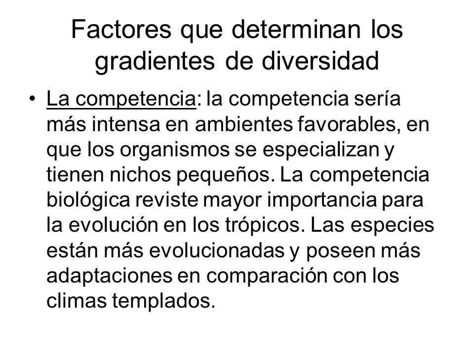 Factores que determinan los gradientes de diversidad La competencia: la competencia sería más intensa en ambientes favorables, en que los organismos s