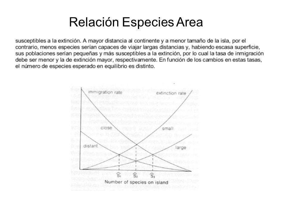 Relación Especies Area