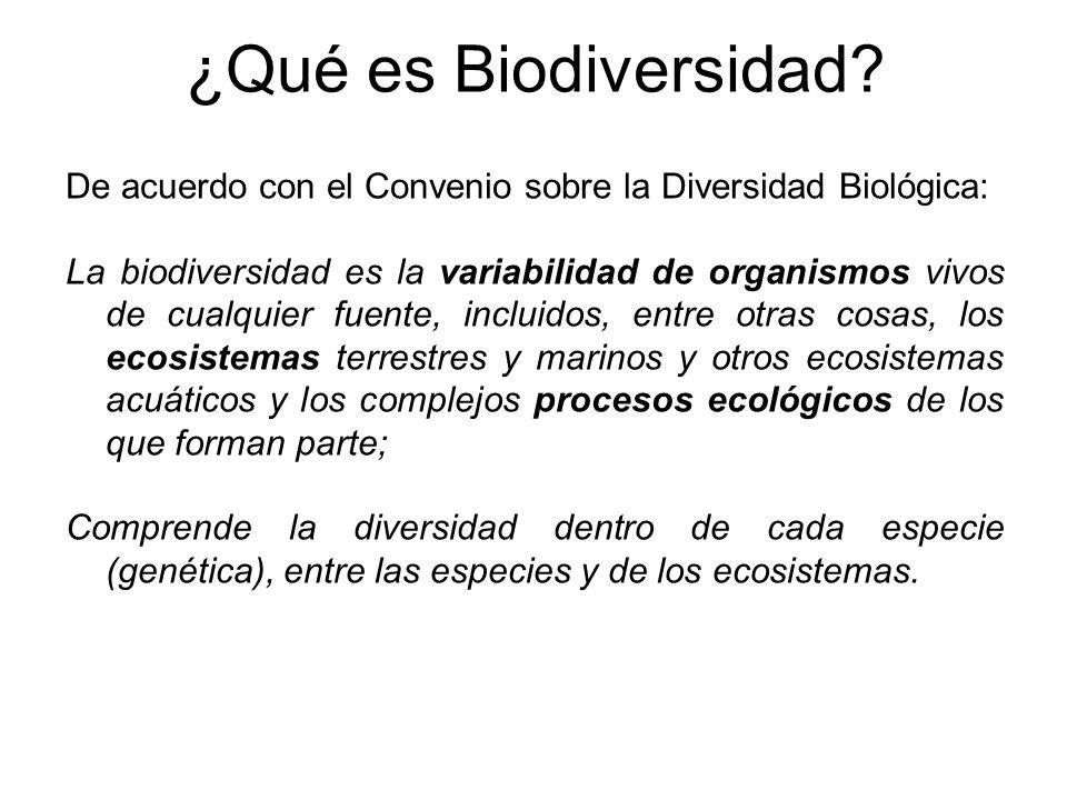 ¿Qué es Biodiversidad? De acuerdo con el Convenio sobre la Diversidad Biológica: La biodiversidad es la variabilidad de organismos vivos de cualquier