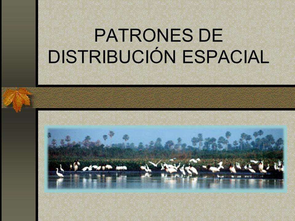 PATRONES DE DISTRIBUCIÓN ESPACIAL