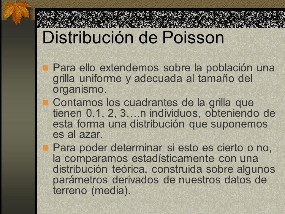 Distribución de Poisson Para ello extendemos sobre la población una grilla uniforme y adecuada al tamaño del organismo. Contamos los cuadrantes de la