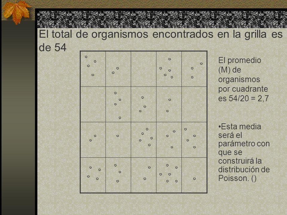 El total de organismos encontrados en la grilla es de 54 El promedio (M) de organismos por cuadrante es 54/20 = 2,7 Esta media será el parámetro con q