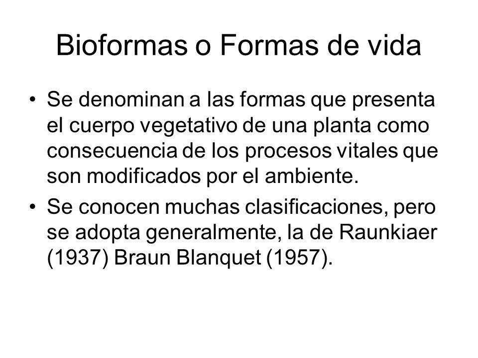 Bioformas o Formas de vida Se denominan a las formas que presenta el cuerpo vegetativo de una planta como consecuencia de los procesos vitales que son