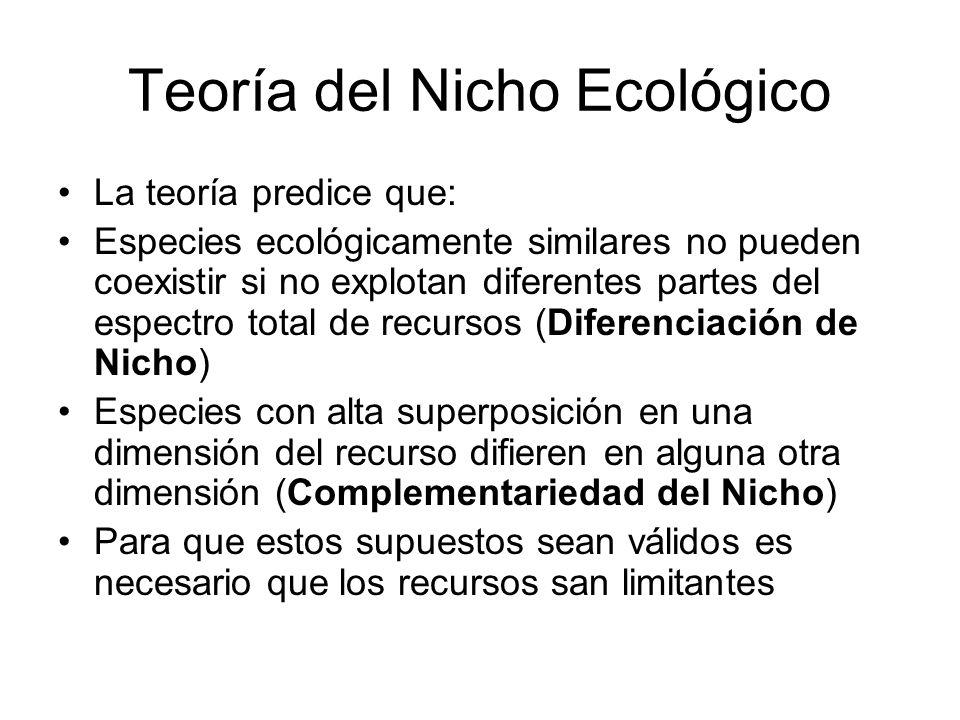 Teoría del Nicho Ecológico La teoría predice que: Especies ecológicamente similares no pueden coexistir si no explotan diferentes partes del espectro