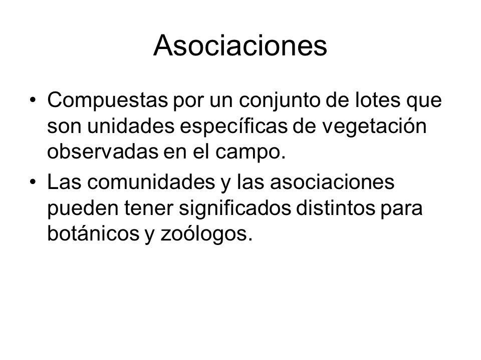 Asociaciones Compuestas por un conjunto de lotes que son unidades específicas de vegetación observadas en el campo. Las comunidades y las asociaciones