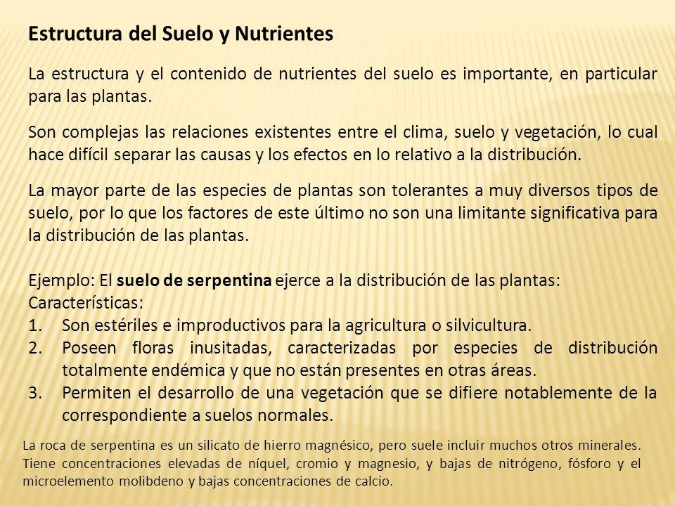 Estructura del Suelo y Nutrientes La estructura y el contenido de nutrientes del suelo es importante, en particular para las plantas. Son complejas la