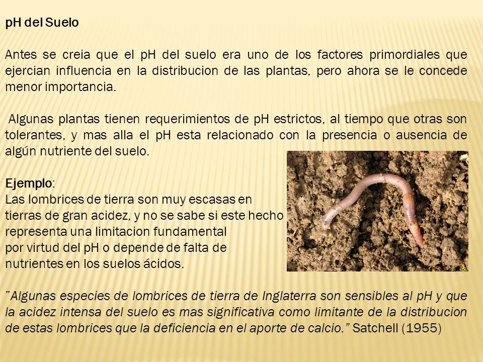 pH del Suelo Antes se creia que el pH del suelo era uno de los factores primordiales que ejercian influencia en la distribucion de las plantas, pero a