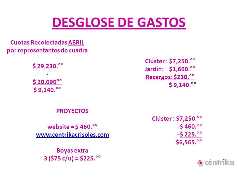 DESGLOSE DE GASTOS Cuotas Recolectadas ABRIL por representantes de cuadra $ 29,230.°° - $ 20,090°° $ 9,140.°° Clúster : $7,250.°° Jardín: $1,660.°° Re