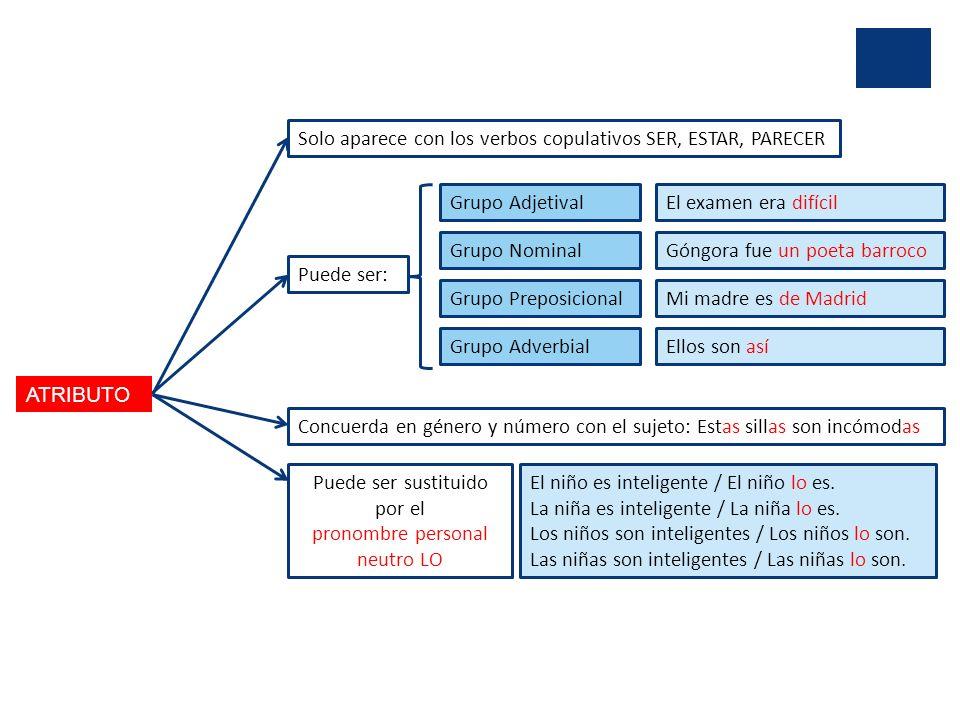 ATRIBUTO Solo aparece con los verbos copulativos SER, ESTAR, PARECER Puede ser: Grupo Adjetival Grupo Nominal Grupo Preposicional Grupo Adverbial El e