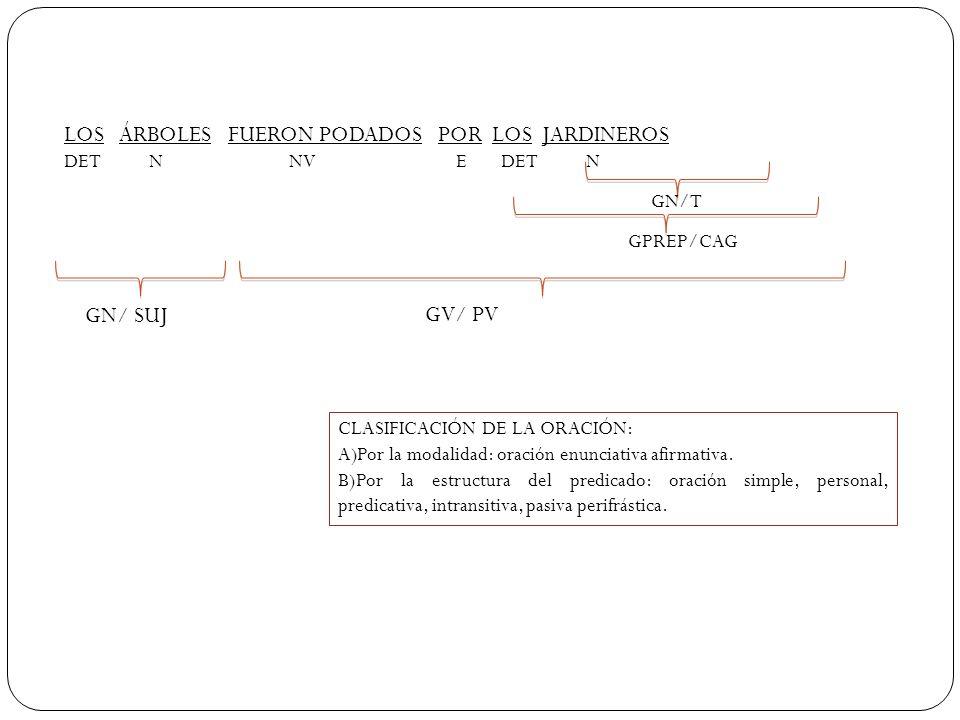 LOS ÁRBOLES FUERON PODADOS POR LOS JARDINEROS DET N NV E DET N GN/T GPREP/CAG GV/ PV GN/ SUJ CLASIFICACIÓN DE LA ORACIÓN: A)Por la modalidad: oración