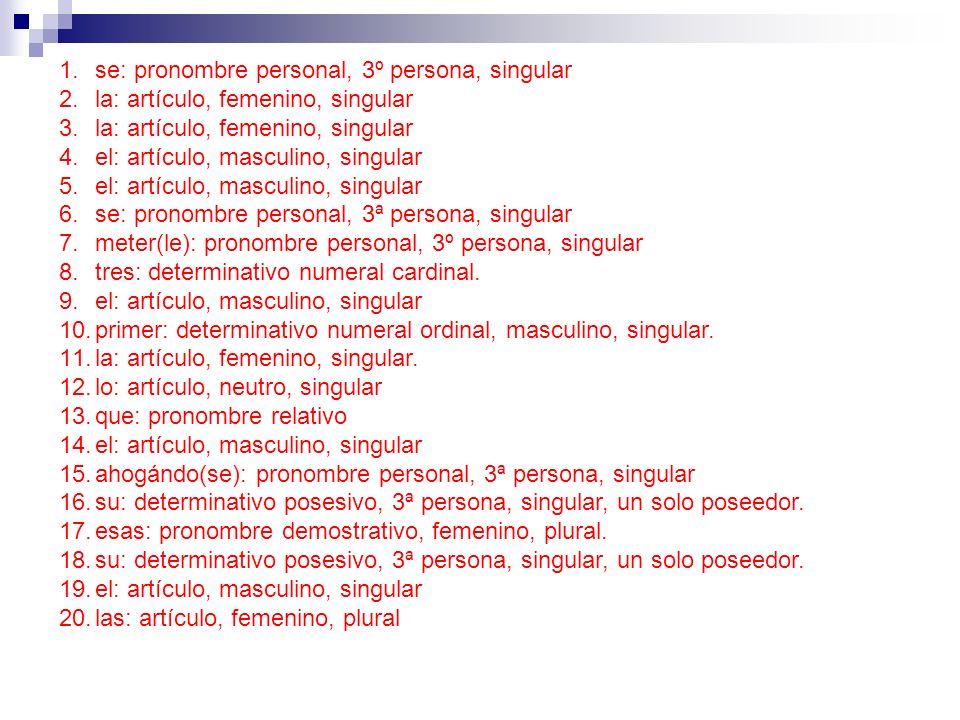 1.se: pronombre personal, 3º persona, singular 2.la: artículo, femenino, singular 3.la: artículo, femenino, singular 4.el: artículo, masculino, singul